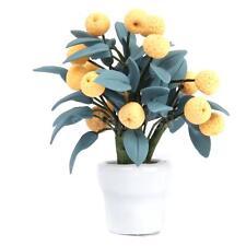 Dollhouse Miniature Handmade Kumquat Tree Fruits Flowerpot Garden Plant 1/12