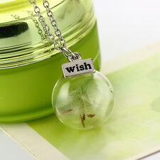Fashion Women's Real Dandelion Seeds Lucky Glass Wish Bottle Pendant Necklace