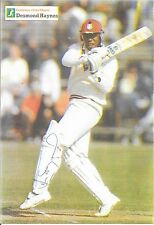 DESMOND HAYNES HAND SIGNED PHOTO IMAGE ON A4 PAPER ~ WEST INDIES CRICKET GREAT
