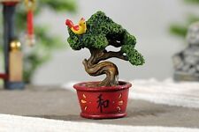 Miniature Dollhouse FAIRY GARDEN ~ Zen Bonsai ~ NEW