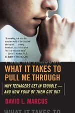 What It Takes To Pull Me Through: Why Teenagers Get in Trouble and How Four of T