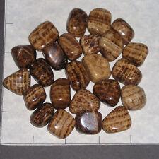 ARAGONITE sm-med tumbled, 1/2 lb bulk stone brownish stripes China