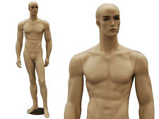 Male Mannequin Manequin Manikin Dress Form Display #MD-CCB32F