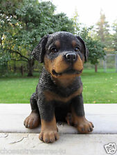 Rottweiler Puppy sitting Dog Figurine Statue Resin Pet  Canine New