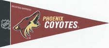 NHL Mini Pennant Collection Decor 4''X9'' Banner Flag Phoenix Coyotes Team