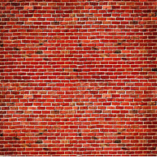 10X10FT Vinyl Background Photography Backdrop Studio Photo Props Red Brick Wall