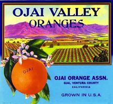 Ojai Ventura County Ojai Valley Orange Citrus Fruit Crate Label Art Print