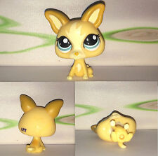 Littlest Petshop #1656 Tan Yellow Short Hair Chihuahua Puppy Dog Authentic LPS