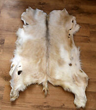 NATURAL GENUINE GOAT SKIN LEATHER FUR RUG -  Taxidermy - HOME DECOR