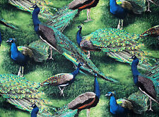 PEACOCK ALLOVER PAGEANT OF COLOR PEACOCKS 100% COTTON FABRIC WILD WINGS YARDAGE