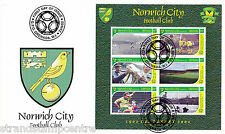 Norwich City FC - Premiership Football Commemorative Stamp Sheet from Grenada