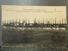 cpa 69 grigny sur saone le village et la prairie troupeau