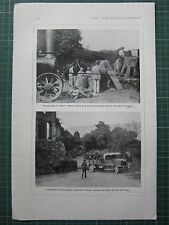 1917 WWI WW1 PRINT ~ WOMEN ASSISTING HARVEST WHEAT CROP ~ CANADIAN FORESTRY CORP