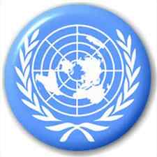 Small 25mm Lapel Pin Button Badge Novelty Un - United Nations Flag