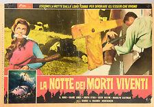 FOTOBUSTA 2, LA NOTTE DEI MORTI VIVENTI Night of the Living Dead ROMERO, HORROR