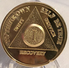 1 Year Alcoholics Anonymous AA 24k Gold Plated Medallion Chip Sobriety Coin One