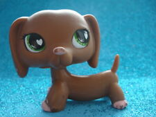 ORIGINAL Littlest Pet Shop Dachshund  556 Shipping with Polish