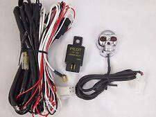 12V Universal Fog Light Wiring Harness Relay/Fuse SKULL Switch Flood/Spot Lamp