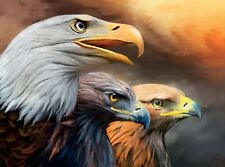 3D Lenticular Picture Portrait of three eagles size approx 39 x 29 cm
