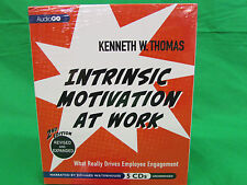 Intrinsic Motivation at Work, 2nd Edition: What Really Drives Employee Engageme