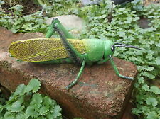 Large Insect GRASSHOPPER -  18cm resource or pre school minibeast / bug topic