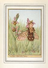 FLOWER FAIRIES VINTAGE PRINT : THE BEE ORCHIS FAIRY