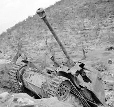 WW2 Photo WWII  Destroyed German Armor in Italy 1944 World War Two  / 4132