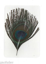 Laminated Bird Feather - Indian Peacock (Pavo cristatus) : 11x7.5 cm sheet