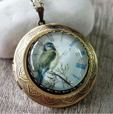 Blue Bird Vintage Brass Round Picture Locket Pendant Statement Necklace
