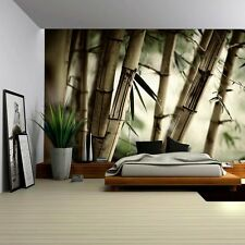 Close Up Views of a Bamboo Forest - Wall Mural- 100x144 inches