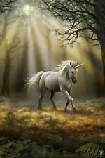 (LAMINATED) ANNE STOKES GLIMPSE OF A UNICORN POSTER (61x91cm)  PICTURE PRINT NEW
