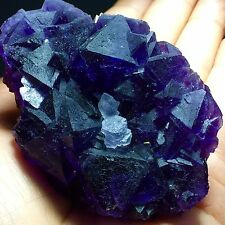 210g  Museum Quality--Natural Purple Octahedral Fluorite & Green Cubic Fluorite