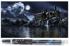 HYDOR h2show FONDO DECORATIVO,MAGIC WORLD 80cm X 40cm.Para acuario.