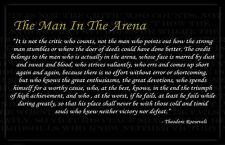 Theodore Roosevelt Man In The Arena 11x17 Poster