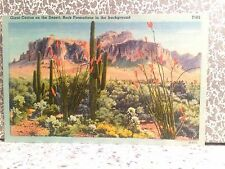 POSTCARD SEVERAL TYPES OF DESERT PLANTS AND FAUNA, CATUS, ALOH VERA