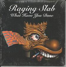 RAGING SLAB What Have w/ UNRELEASED w/ PEARL JAM drum JACK IRONS PROMO CD single
