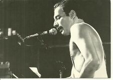 RARE / CARTE POSTALE - POSTCARD : THE QUEEN - FREDDIE MERCURY