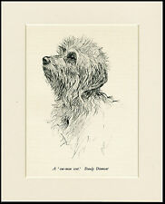 DANDIE DINMONT TERRIER VINTAGE 1930'S DOG ART PRINT by KF BARKER READY MOUNTED
