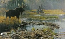 Robert Bateman -  Autumn Overture-Moose  -  250  S/N Giclee  on  Canvas