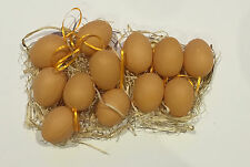 12x Easter Decor Plastic Easter Eggs w Strings in Natual Grass Easter Hanging