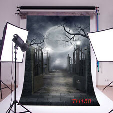 LB Thin Vinyl Halloween Backdrop Photography Props Photo Background 5X7FT TH158