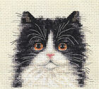 BLACK & WHITE FLUFFY CAT, KITTEN ~ Full counted cross stitch kit
