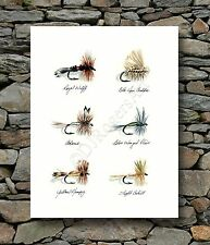 "Fly Fishing ""TROUT FLIES"" Watercolor 8 x 10 ART Print Signed by Artist DJR"