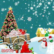 Christmas 10'x10' Computer-painted Scenic Photo Background Backdrop SN770B881