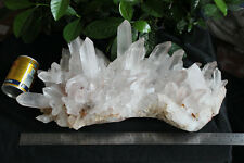 26.5LB HUGE NATURAL CLEAR QUARTZ CRYSTAL CLUSTER POINTS ORIGINAL Brazil