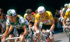 STEPHEN ROCHE 1987 TOUR DE FRANCE CHAMPION TEAM CARRERA POSTER
