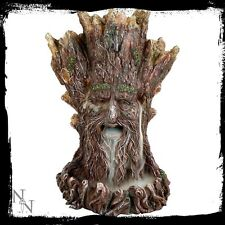 Tree Spirit Backflow Incense Burner Nemesis Now + 1 Bottle Cones Green Man Wicca