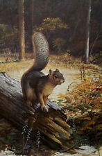 """Ray Harm """"FOX SQUIRREL"""" Print Signed & Number Rare Art Print"""