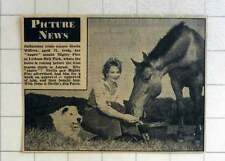 1957 Badminton Trials Winner Sheila Wilcox With Horse Mighty Fine And Dog Patch