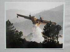 PHOTO PRESSE AVION CANADAIR CL-215 AMPHIBIAN FIRE FIGHTER FEU FORET PELICAN